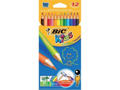 PASTELLI BIC EVOLUTION -12pz 82902910